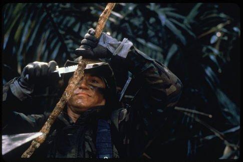 Predator photo